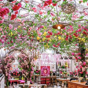 Цветен ресторан во Њујорк е како бајка од соништата
