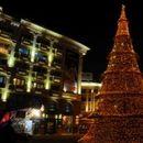 Утревечер ќе светне новогодишната елка во Скопје