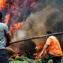 Грција побара помош од ЕУ за гасење на пожарот на островот Евбеја