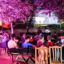 """""""Mакедокс"""" од 21 до 28 август со 70 документарци од светот и десет од државава"""