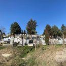 Притвор за крадецот кој откопа гроб за да украде златен ланец од покојно лице