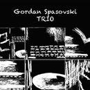 Вечерва премиера на албумот- првенче на Кривопаланечкиот џез пијанист Гордан Спасовски