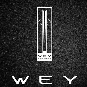 WEY Project 01