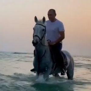 Божков язди кон, Борисов на поход, а Манолова - в буйни води