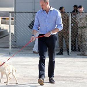 Уилям и Кейт видяха обучените кучета на армията в Пакистан