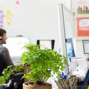 Најосновните работи кои секој нов веб дизајнер мора да ги знае