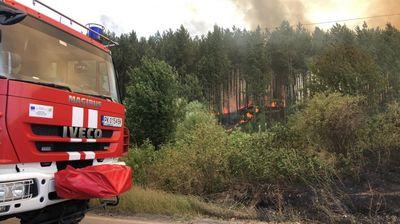 Потушен е пожарът край Перник