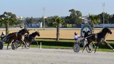 First win of the year for Amour Du Loup in Premier race