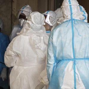 UK hunts for carrier of worrying Brazil Covid-19 strain