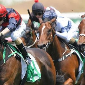 Canterbury tips: Moore than ready for Country crack