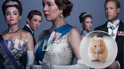 Eagle-eyed Netflix viewers spot special furry 'guest' in 'The Crown'