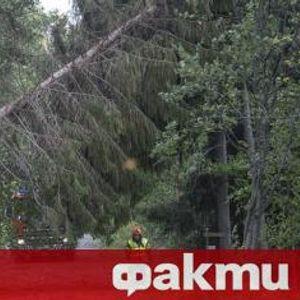 80 000 домакинства във Финландия са без ток заради мощна буря