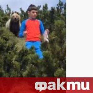 Вижте как мечка следи момче в планината