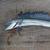 На Далечниот Исток на Русија пронајдена риба-монструм наречена алеписаурус (ФОТО)