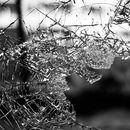 Автомобил излета од патот Велес-Скопје, тешко повредена жена
