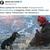 """Џејми Ли Кертис за """"Медена земја"""" твитна: Колку совршен филм, воодушевена сум"""