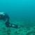 Нуркачите открија живеалишта на загрозен вид рак во Охридското Езеро