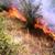 Пожар во Охридско: Косел, Опеница и Вапила горат, кризниот штаб заседава