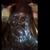 ЧУДО НА ОСТРОВОТ ЕГИНА: Верници сведоци на отворање на очите на иконата на Св. Нектарие Егински