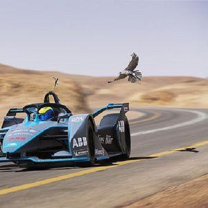 Маса се тркаше со најбрзата птица на светот, кој победи?