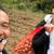 """Ѓоковиќ собира компири додека Надал и Федерер се подготвуваат за """"Лејвер куп"""""""