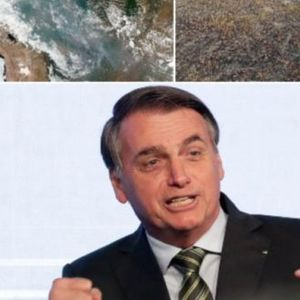 Поради овој човек цела планета е во опасност: Обелоденети тајни документи кои откриваат што се крие позади разорните пожари во Амазонија