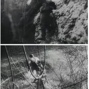 КОНЕЧНО РАЗОТКРИЕНА строго чуваната нацистичка нарко-тајна: Еве зошто армијата на Хитлер на планинските венци се однесувале како СУПЕРМЕНИ!