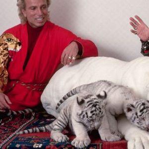 Илузионист живеел со лавови, преживеал напад на ТИГАР а починал од Корона