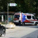 Куче скитник нападна тригодишно девојче во Скопје