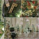 ФОТО+ВИДЕО: Меланија Трамп ја покажа празничната декорација во Белата куќа