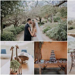 Прекрасно: Фотографии од свадбата на двојка која одлучи да се земе во Зоолошка градина