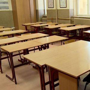 Австрискиот министер за образование предлага регуларна настава без маски