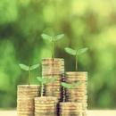 Finance Think: Еколошката такса претставува еднократно зголемување на цените со постојан и можен преносен ефект