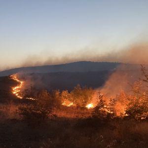 Вчера беснееја пожари, денеска суети и префрлање одговорност