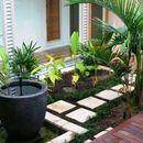 Идеи со внатрешни градини: Изгледаат совршено!