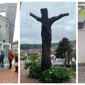 Го исекоа дрвото пред гробот на Тоше- Вчудоневидени бидејќи личи како Исус распнат на крст