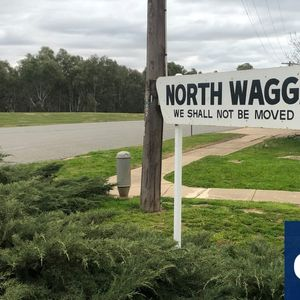 Brave or naive? Conservative Wagga surprises with climate emergency declaration