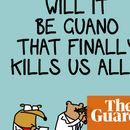 Have we discovered the hideous truth about seagulls? They bring AN UNHOLY PLAGUE | First Dog on the Moon