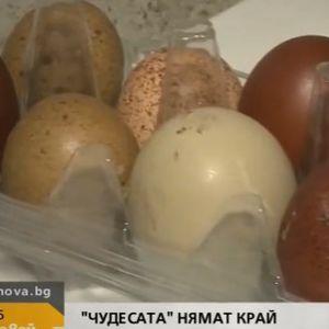 На едно място в България кокошките снасят цветни яйца