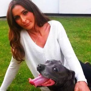 Да погребеш кучето си за 4 000 паунда