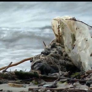 Първи острови от пластмасови боклуци вече са факт в Черно море