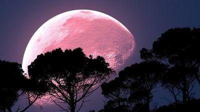 Зодиите, на които Ягодовата луна ще донесе щастие