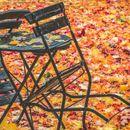 Зодиите, за които есента ще е вълшебна