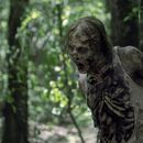 'Walking Dead' Brings Back Old Problem In Season 10 Premiere