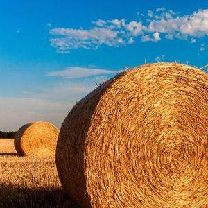 Съветът на министрите по земеделие постигна общ подход по бъдещата Обща селскостопанска политика