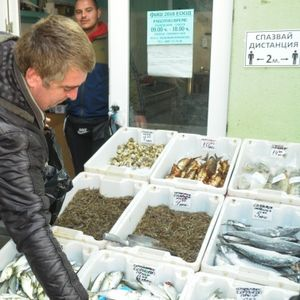 Двойно поевтиня чернокопът на пазара в Бургас