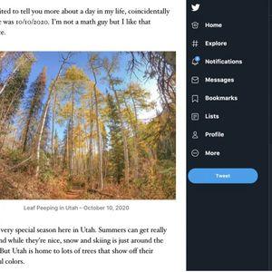 Новата WordPress алатка автоматски твитува цели текстови