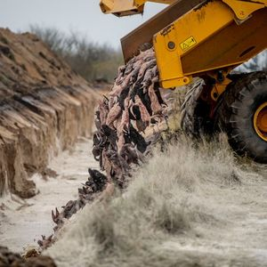 Данска ги ископува телата на визоните уништени поради коронавирусот