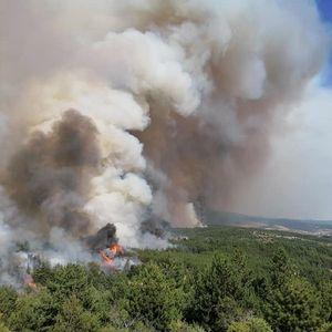 Пожарот во Пехчево се шири и накај Беровско, локалните власти бараат помош од жителите