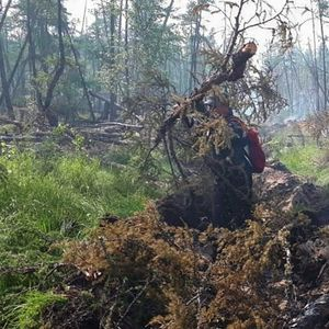 Војската во Русија помага во гаснењето на пожарите